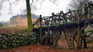 Christinehofs park och natur - en trädgårdshistorisk vandring