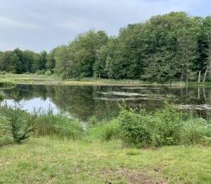 Den halvcirkelformade platsen där siktlinjen möter vattnet innan den fortsatte flera kilometer genom skogen