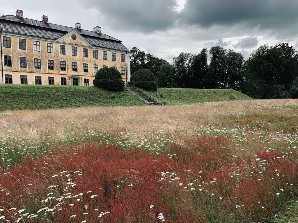 Nedre terrassens gräsplaner